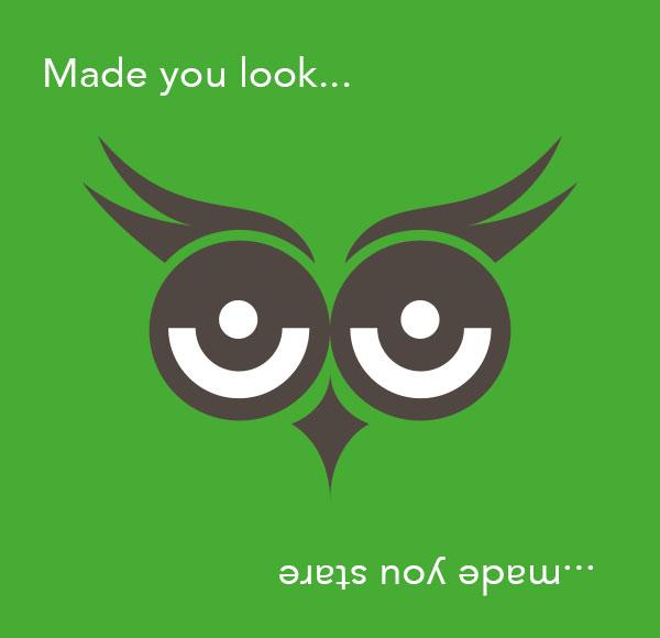 my-premier-half-image-green